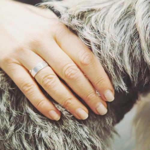 Hundmassage, hundmassör